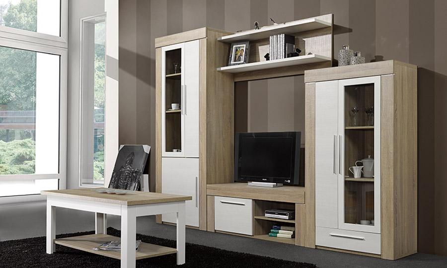 Mueble sal n combinado muebles sebe for Mueble modular salon
